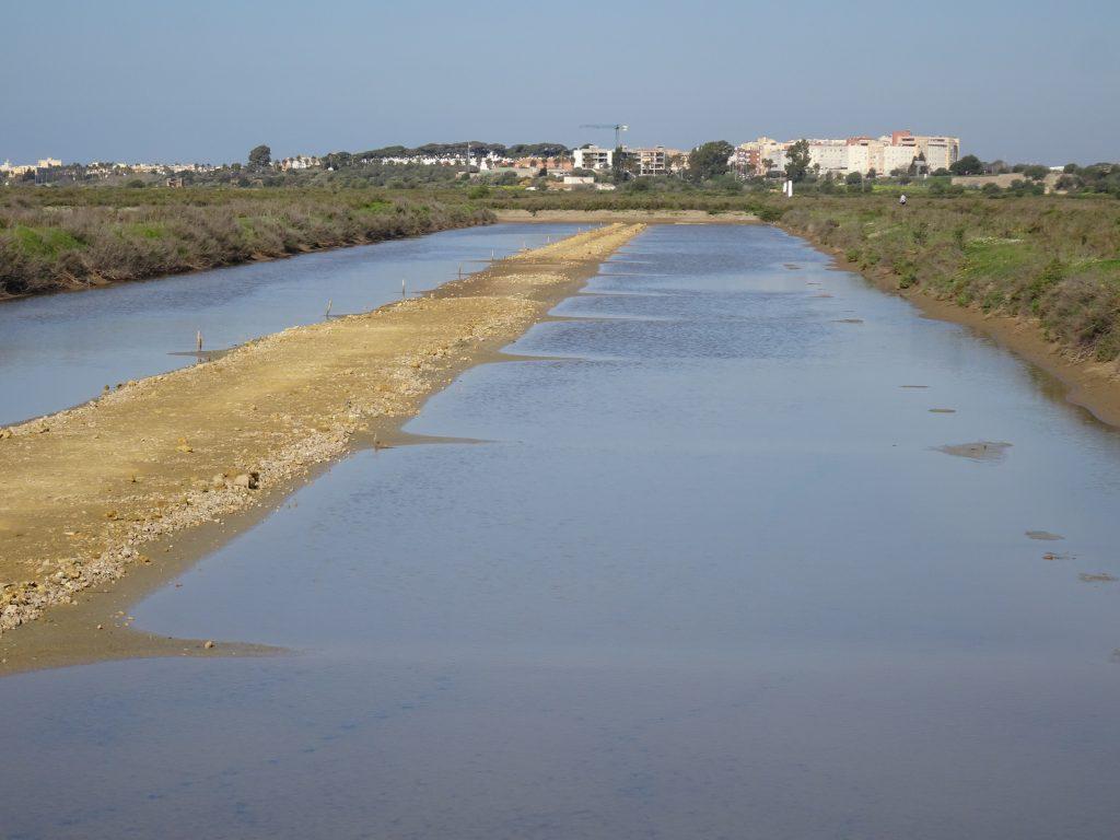 Vuelven a las Salinas de la Esperanza las Jornadas de Conservación Activa
